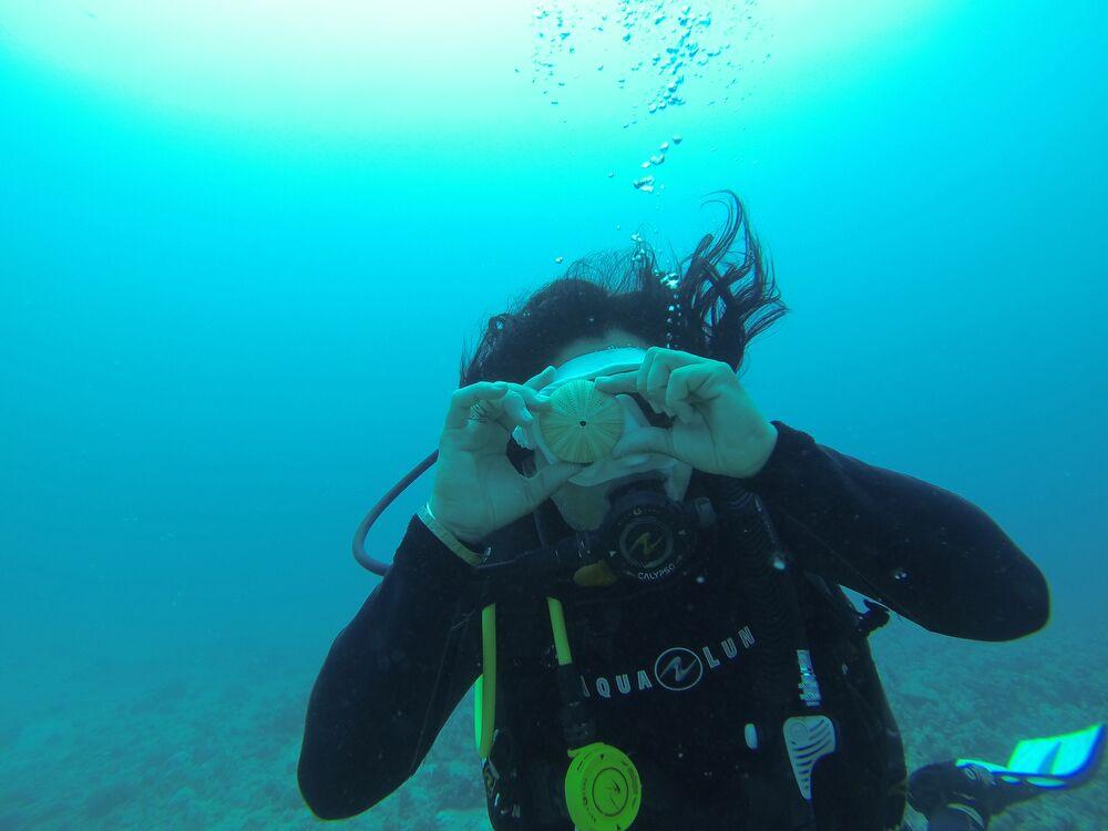 scuba diving, scuba gear, diving certification, scuba diving trips, ocean activities