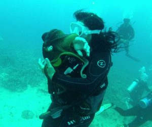 scuba diving, diving certification, scuba diving trips, ocean activities
