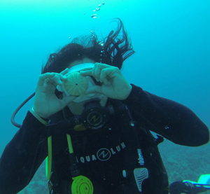 scuba diving, scuba gear, diving certification, ocean activities