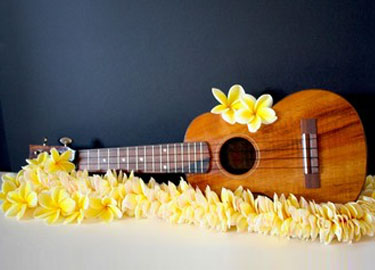 HALEIWA UKULELES Photo