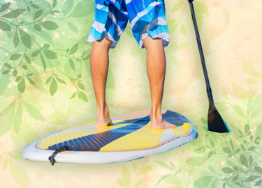 Stand Up Paddle Board Rentals Photo